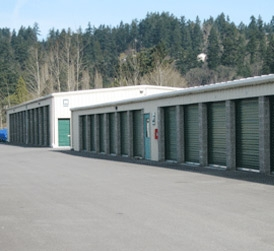 Daffodil Storage - Puyallup - Photo 2