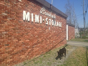 photo of Brookside Mini Storage